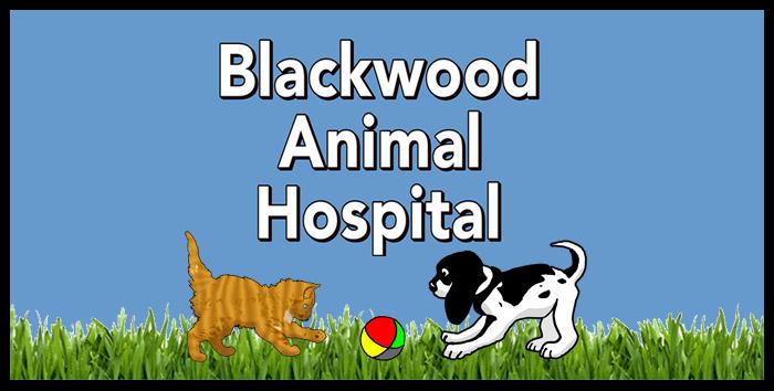 Blackwood Animal Hospital Blackwood Nj